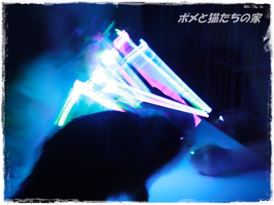 yuki0139.jpg