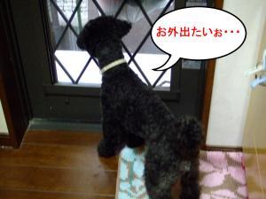繧ゅ・縺。繧・s・狙convert_20120601205532