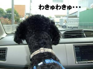 20120602+蜃コ逋コ1_convert_20120602175445