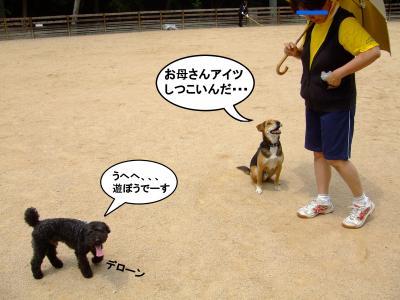 20120602+繝ゥ繝ウ蜀・_convert_20120602183215