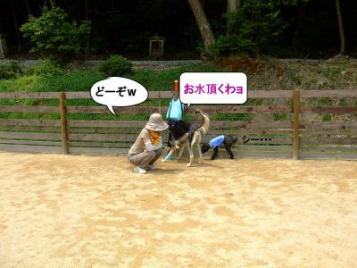 20120602+繝ゥ繝ウ蜀・_convert_20120602185101
