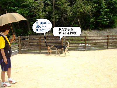 20120602+繝峨Λ繧エ繝ウ・・&縺上i_convert_20120602184900