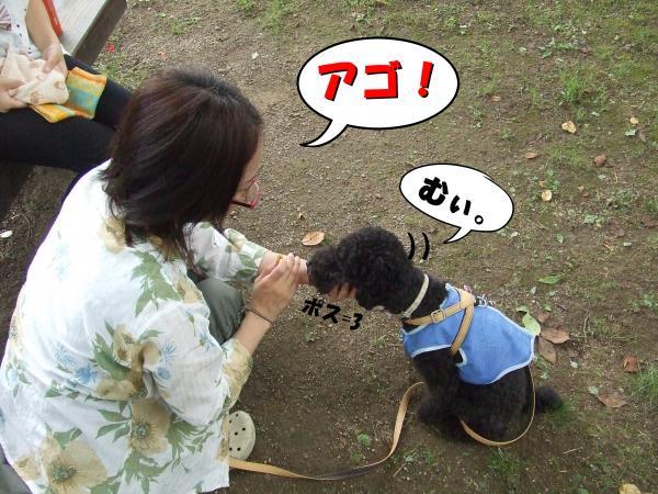 ・撰シ撰シ胆convert_20120717220313