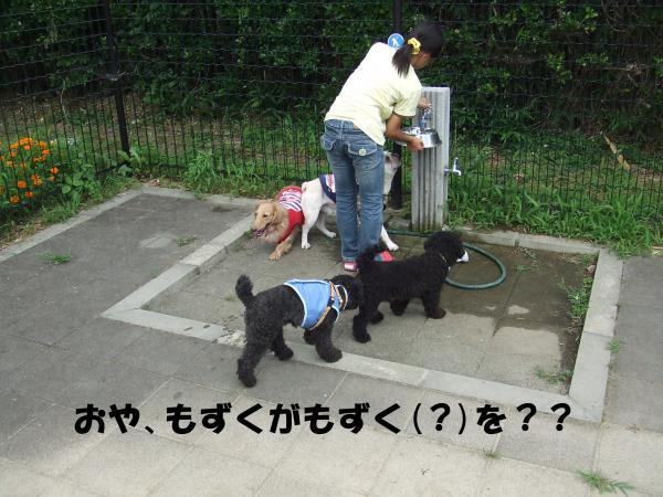 ・撰シ撰シ点convert_20120717220848
