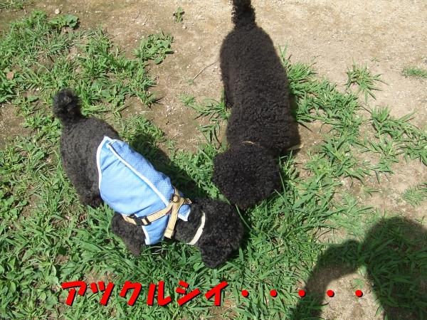 ・撰シ撰シ論convert_20120717221524