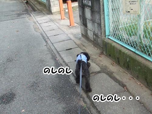 201208032312149f8.jpg