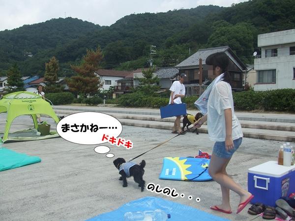 201208130008465fa.jpg