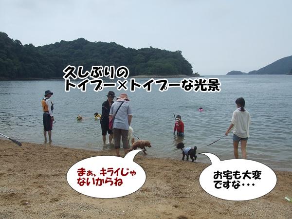 20120814000104bcb.jpg