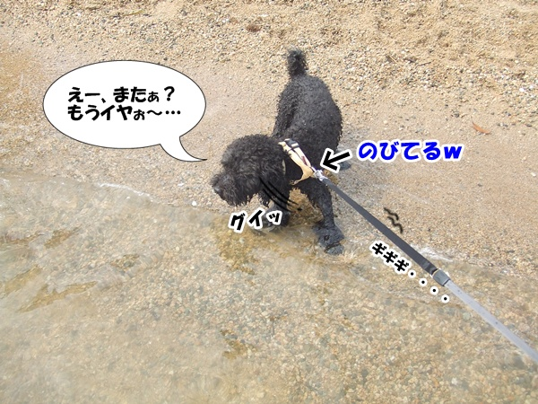 20120816223044cd8.jpg