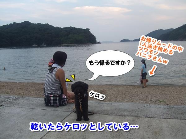 201208190001434c5.jpg