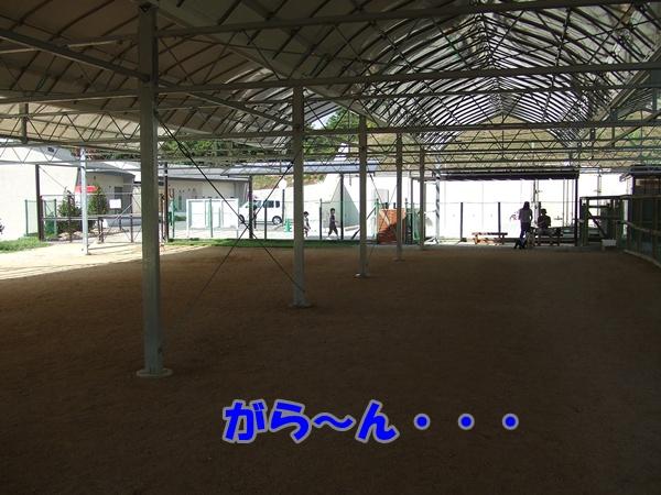 201209172140448a1.jpg