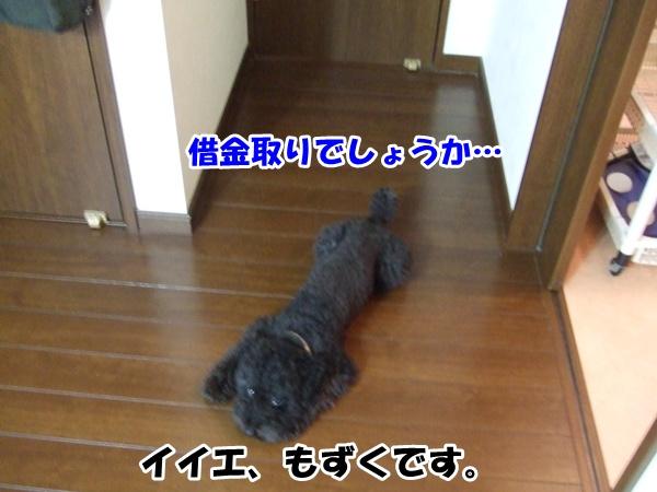 201209182145355da.jpg