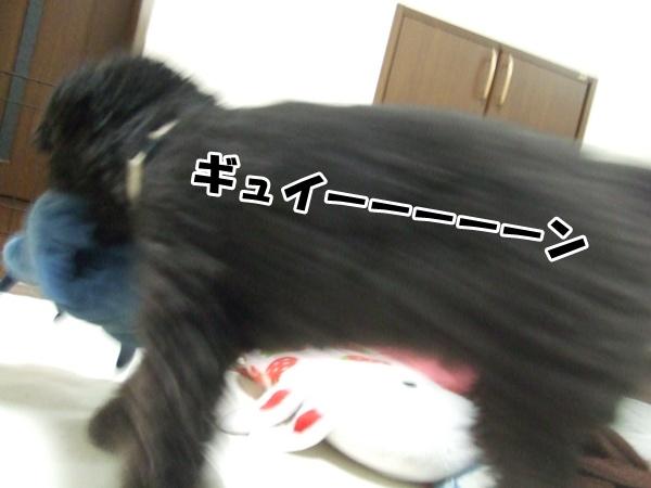 20121005212350237.jpg