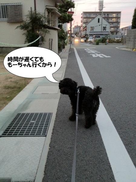 201210092136473fd.jpg