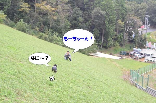 201210102140151dc.jpg