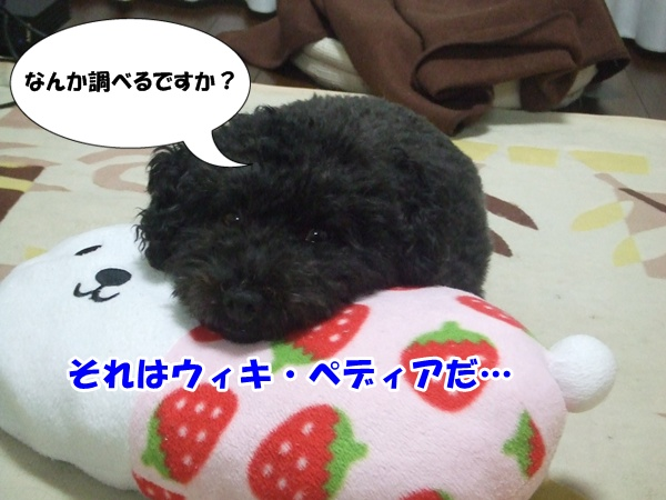 20121024220711ff3.jpg