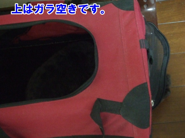 20121026210953da5.jpg