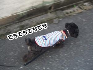 2012110121380118a.jpg