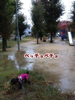 20121111220645211.jpg
