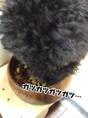 20121111221529f41.jpg