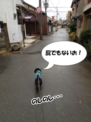 20121118222349f8f.jpg