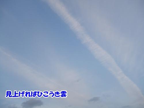 20121122231534476.jpg