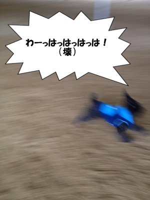 20130113220446794.jpg
