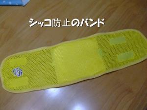 DSCF1625_convert_20120620214946.jpg