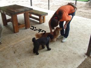 DSCF1743_convert_20120610201234.jpg