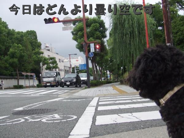 DSCF2177_convert_20120704204232.jpg