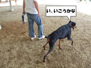 DSCF2493_convert_20120709231112.jpg