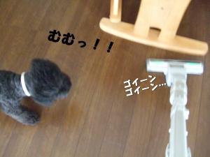 DSCF2601_convert_20120713213503.jpg