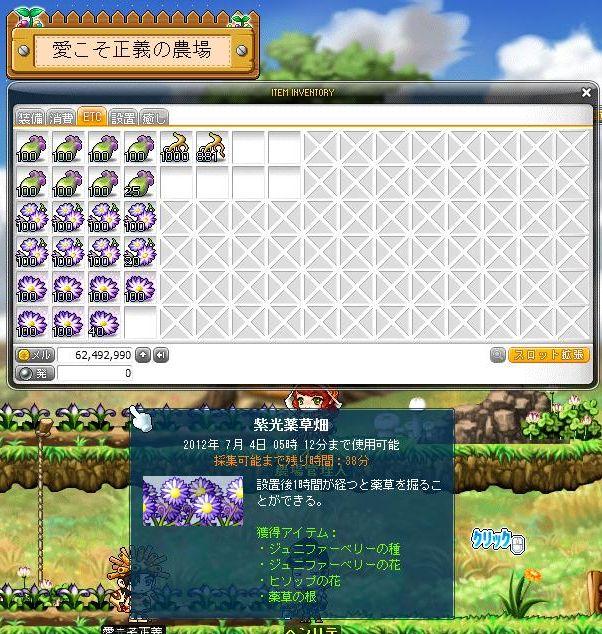 Maple120701_053712.jpg