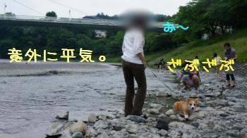 どっかの川