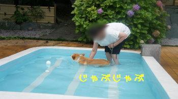 ⑮初めてのプール