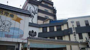 ⑪きぬがわ国際ホテル