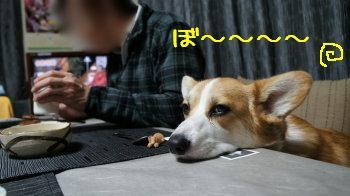 眠いけど頑張る。