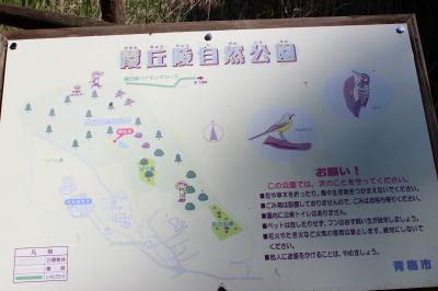 霞丘陵自然公園