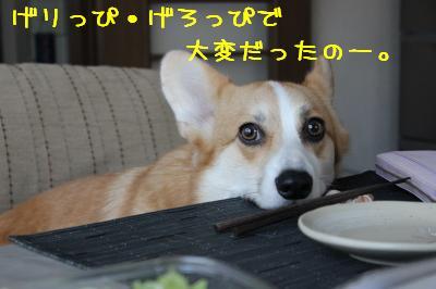 げろっぴ&げりっぴ麦