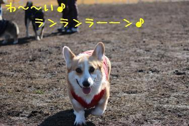 ニコニコ麦さん☆