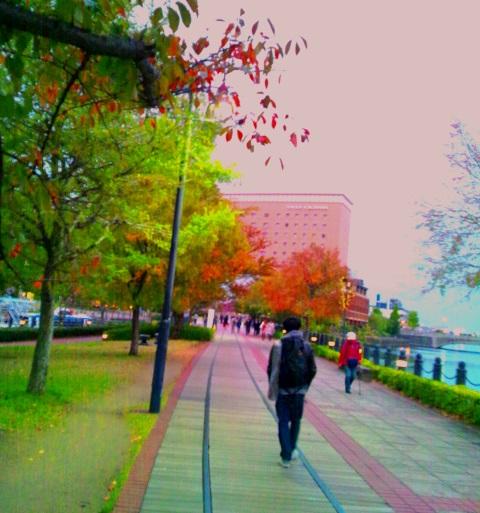 DSC_1288yokohama.jpg
