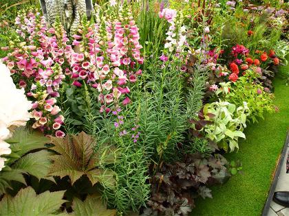 第14回国バラ ねむり姫の庭