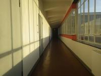 バウハウス14
