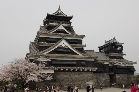 激LOVE!熊本城の桜2 1
