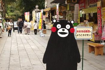 水前寺成趣園の桜2