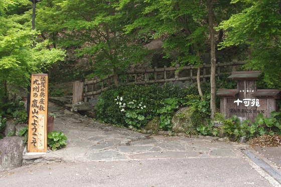 十可苑の春~八重桜1