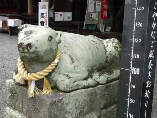 疋野神社の御朱印3