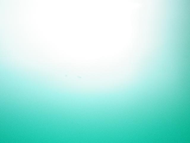 IMGP0238.jpg