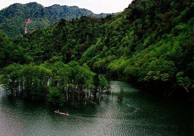 髙田 徳廣「リュウタン湖の新緑」