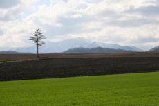 モデルコース 丘陵農地